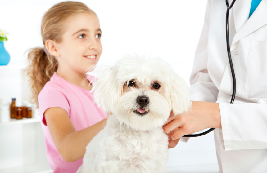 small-child-with-dog-vet