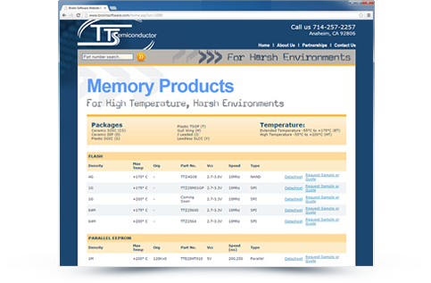 TT Semiconductor Website